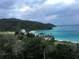 【ブログ】パパイア漬けがうまい!奄美での休暇